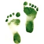 how to be environmentally friendly, reduce carbon foot print, sustainable living